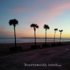 bmth beach