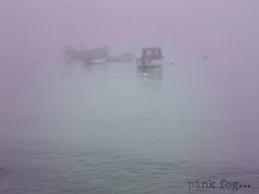 pink fog