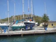 catamaran trip