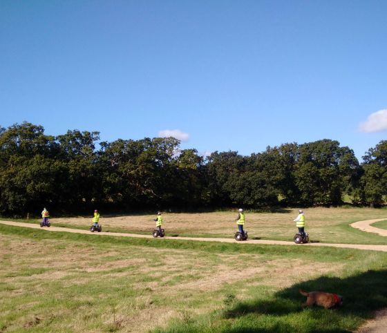 Segways at Upton House