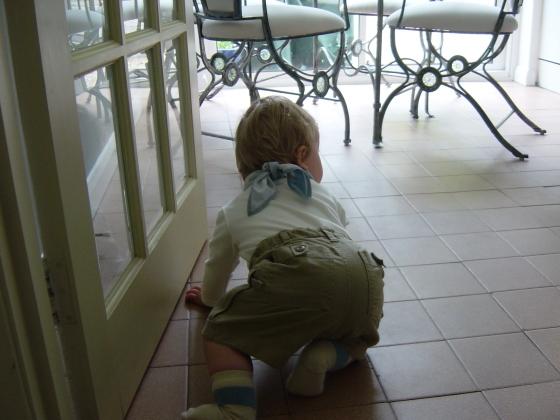 Barnaby crawling